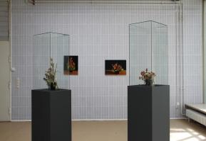 untitled_installation_2011